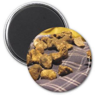 Group of italian expensive white truffles magnet