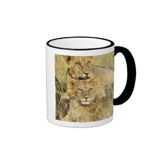 Group of lion cubs, Panthera leo, Masai Mara, Ringer Coffee Mug