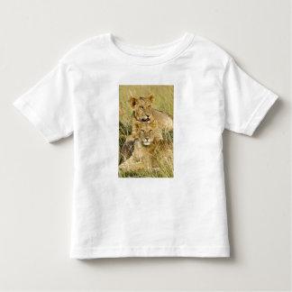Group of lion cubs, Panthera leo, Masai Mara, Toddler T-shirt
