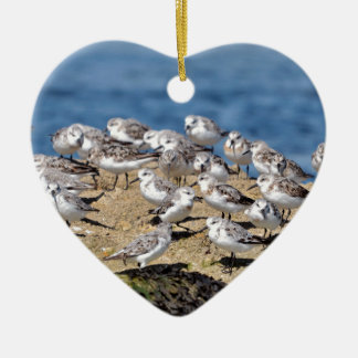 Group of Little stints at Quiberon in France Ceramic Ornament
