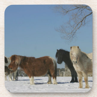 Group of Miniature Horses in the Snow Drink Coaster