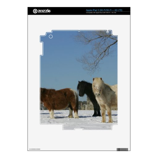 Group of Miniature Horses in the Snow iPad 3 Skin