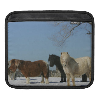 Group of Miniature Horses in the Snow iPad Sleeves
