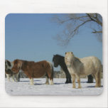 Group of Miniature Horses in the Snow Mouse Pad