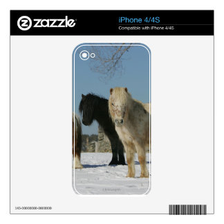 Group of Miniature Horses in the Snow Skins For iPhone 4