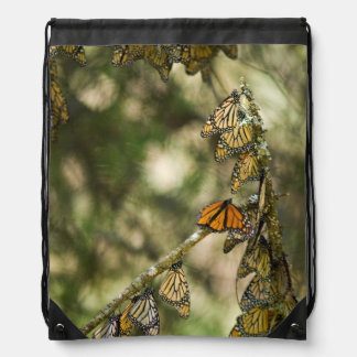Group of Monarch Butterfies, Mexico Drawstring Bag