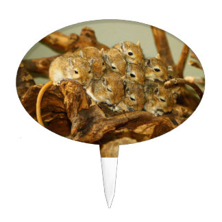 Group of Mongolian Gerbils Meriones Unguiculatus Cake Toppers