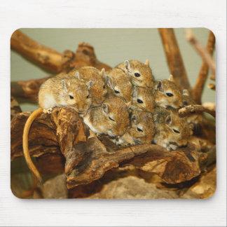Group of Mongolian Gerbils Meriones Unguiculatus Mouse Pad