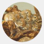 Group of Mongolian Gerbils Meriones Unguiculatus Classic Round Sticker