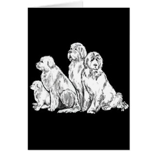 Group of Newfoundland dogs Card