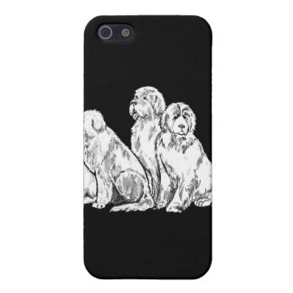 Group of Newfoundland dogs iPhone SE/5/5s Cover