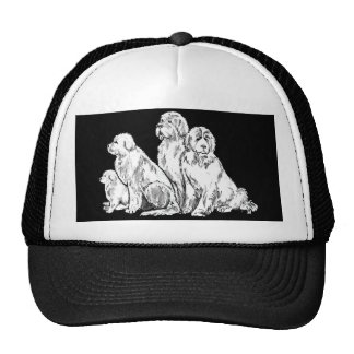Group of Newfoundland dogs Trucker Hat