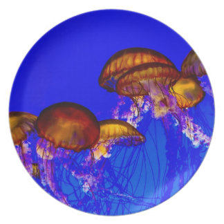 Group of Orange Jelly Fish Dinner Plate