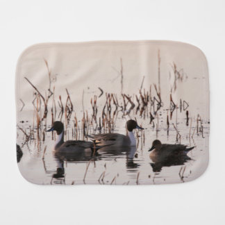 Group of Pintail Ducks Gather and Swims in a lake Baby Burp Cloth