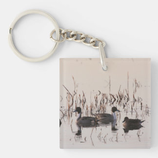 Group of Pintail Ducks Gather and Swims in a lake Double-Sided Square Acrylic Keychain