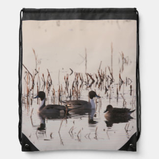 Group of Pintail Ducks Gather and Swims in a lake Drawstring Backpack