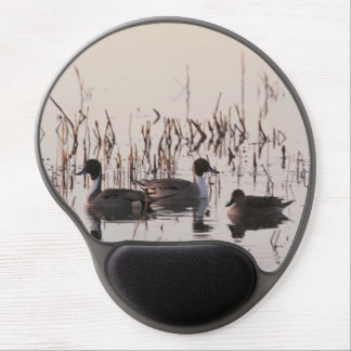 Group of Pintail Ducks Gather and Swims in a lake Gel Mouse Pad
