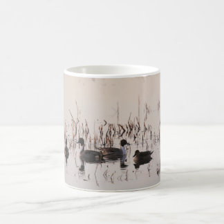 Group of Pintail Ducks Gather and Swims in a lake Coffee Mugs