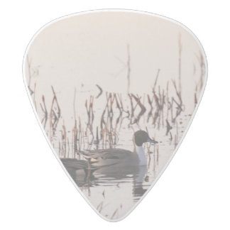 Group of Pintail Ducks Gather and Swims in a lake White Delrin Guitar Pick