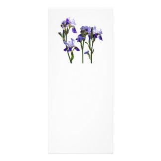 Group of Purple Irises Rack Card