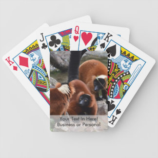 group of red ruffed lemur looking center bicycle playing cards