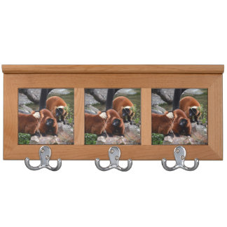group of red ruffed lemur looking center coat rack