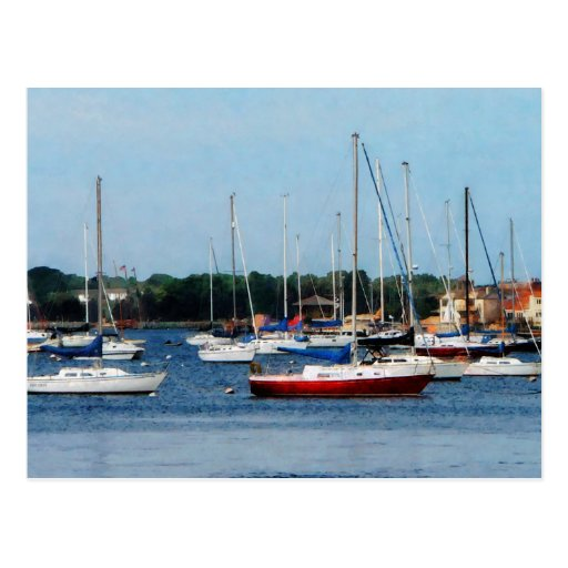 Group of Sailboats Newport RI Postcards
