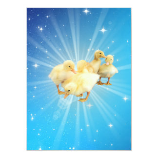 Group of small cute ducks on a blue sky with stars card