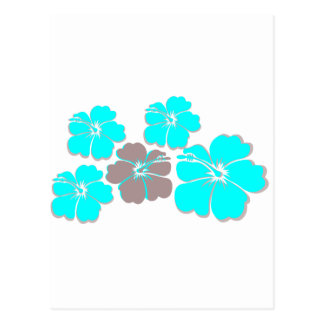 Group of Teal Hibiscus Postcard