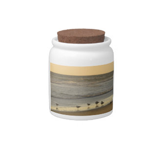Group of Terns Candy Jar