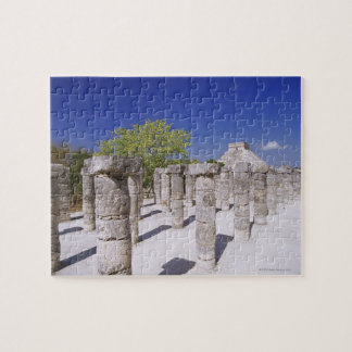 Group of the Thousand Columns at the Temple of Jigsaw Puzzle