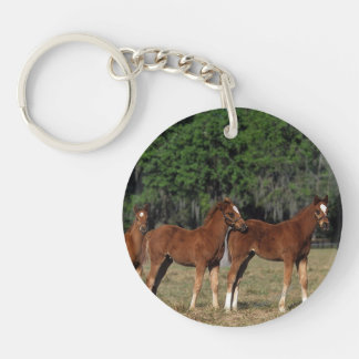 Group of Thoroughbred Foals Keychain