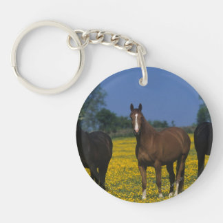 Group of Thoroughbred Horses Keychain