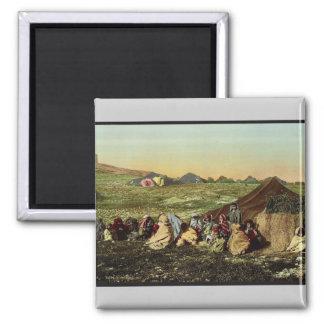 Group of wandering Arabs, Tunis, Tunisia vintage P Fridge Magnets