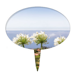 Group of white agapanthus near village and sea cake topper