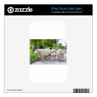 Group of white sheep and lamb on road in nature decals for iPod touch 4G