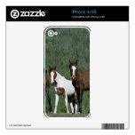 Group of Wild Mustang Horses Decal For iPhone 4S