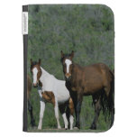 Group of Wild Mustang Horses Kindle 3G Cover
