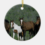 Group of Wild Mustang Horses Ornaments