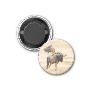 Group of wildebeest 1 inch round magnet