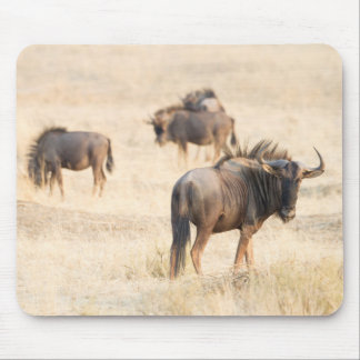 Group of wildebeest mouse pad