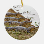 group of yacare caimans Double-Sided ceramic round christmas ornament