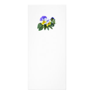 Group Of Yellow And Purple Pansies Rack Card