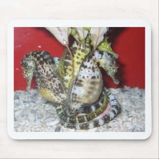 Group of Yellow-Green, Brown & White Sea Horses Mouse Pad