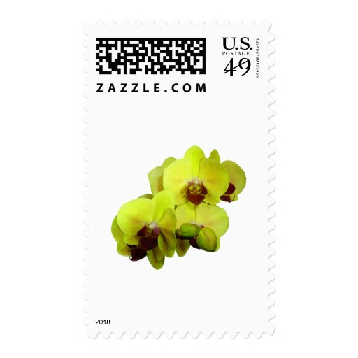 Group of Yellow Orchids Stamp