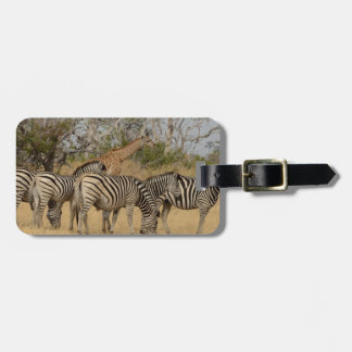 Group of Zebras and Giraffe Luggage Tag
