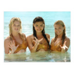 Group Pose In Water Postcard