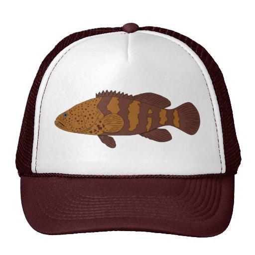 Grouper hat.