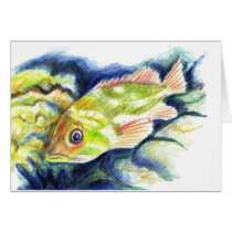 Grouper - Watercolor Pencil Drawing Card