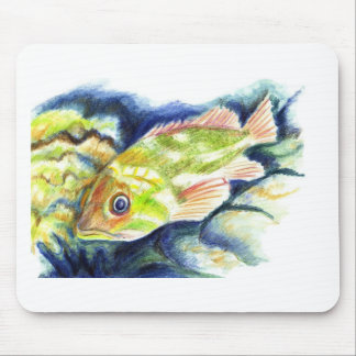Grouper - Watercolor Pencil Drawing Mouse Pad